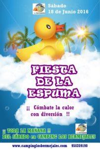 FIESTA DE LA ESPUMA 18-06-2016