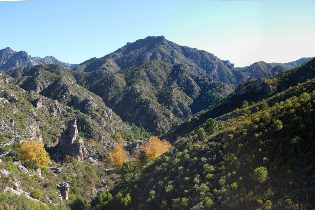 parques-naturales-camping-montana
