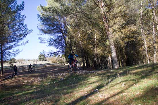Bermejales-mountain-bike_22