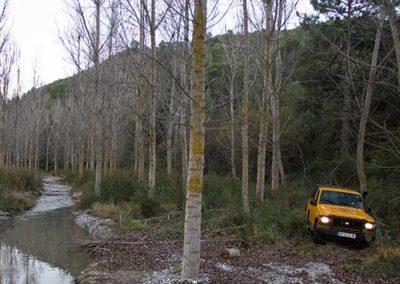 camping-bermejales-4x4-07