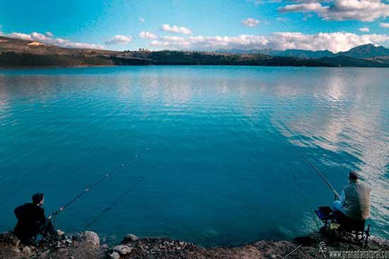 camping-naturaleza-pesca-deportiva-bermejales