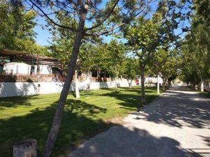 parcela-cesped-camping-bermejales-100m2-(3)