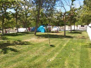 percela-cesped-camping-bermejales-4