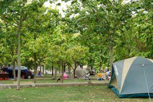 percela-cesped-camping-bermejales-8