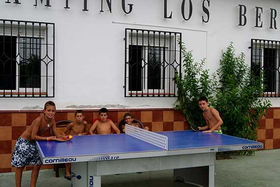 tenis-de-mesa-camping-(7)